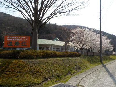 温寿荘の満開の桜